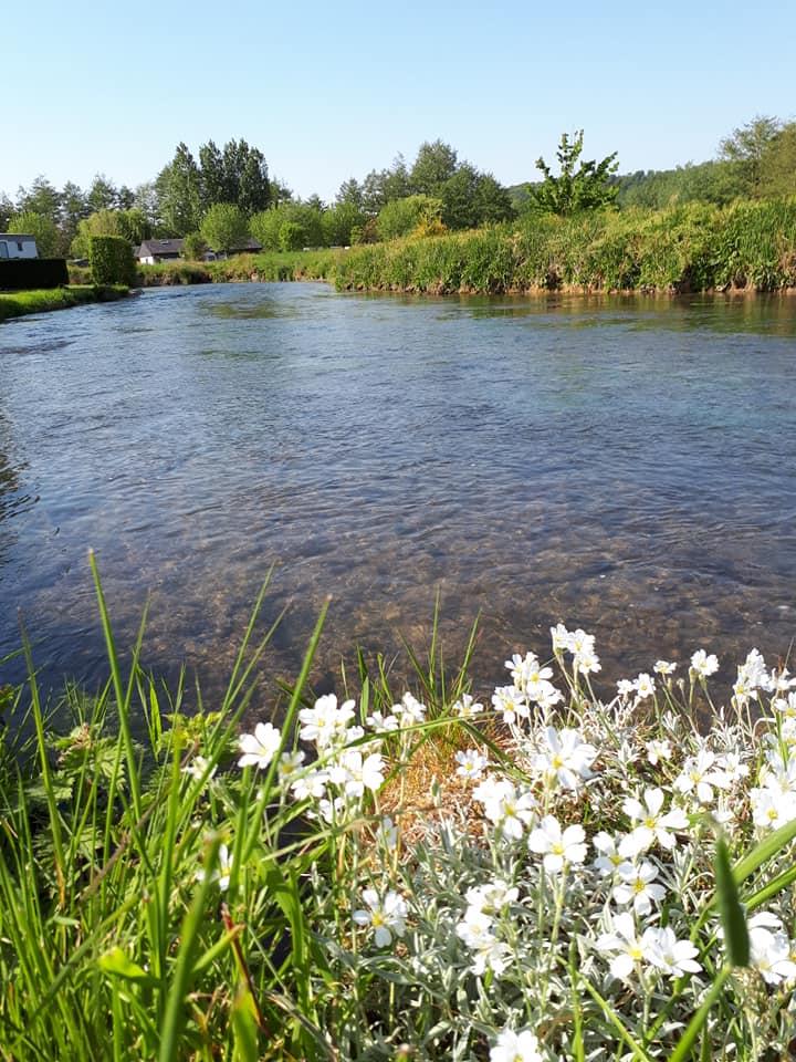 vue rivière la Varenne