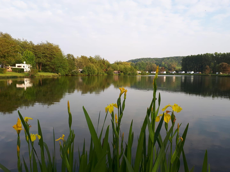 vue sur la rivière du camping
